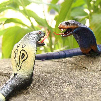 抖音同款玩具:整蛊仿真遥控蛇