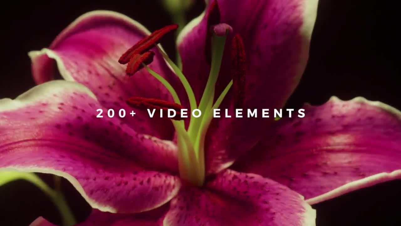 字幕视频素材 200个标题文字图形转场动画4K视频高清素材 视频特效 第1张