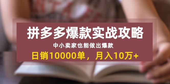拼多多爆款实战攻略:中小卖家也能做出爆款 日销10000单 月入10W+