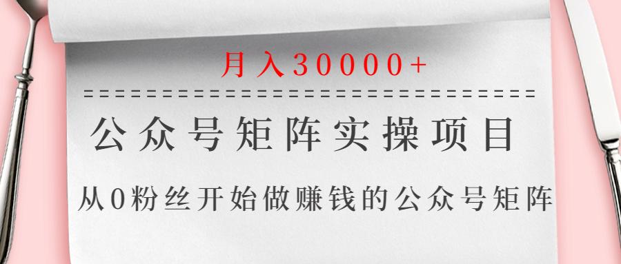 公众号矩阵实操项目 从0粉丝开始做赚钱的公众号矩阵 月入30000+
