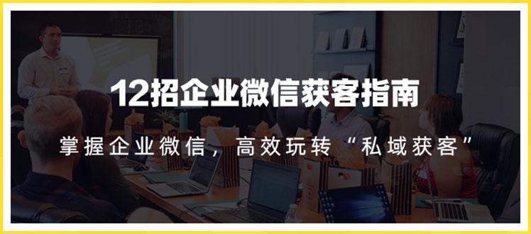 12招企业微信获客指南:链接11亿微信用户 提前把握企业新机遇